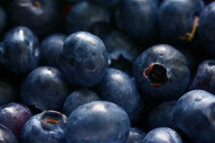 antioxidant-berries-bilberry-139749